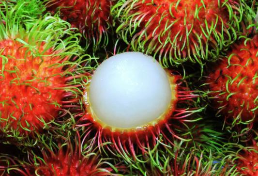 What Does Rambutan look like?